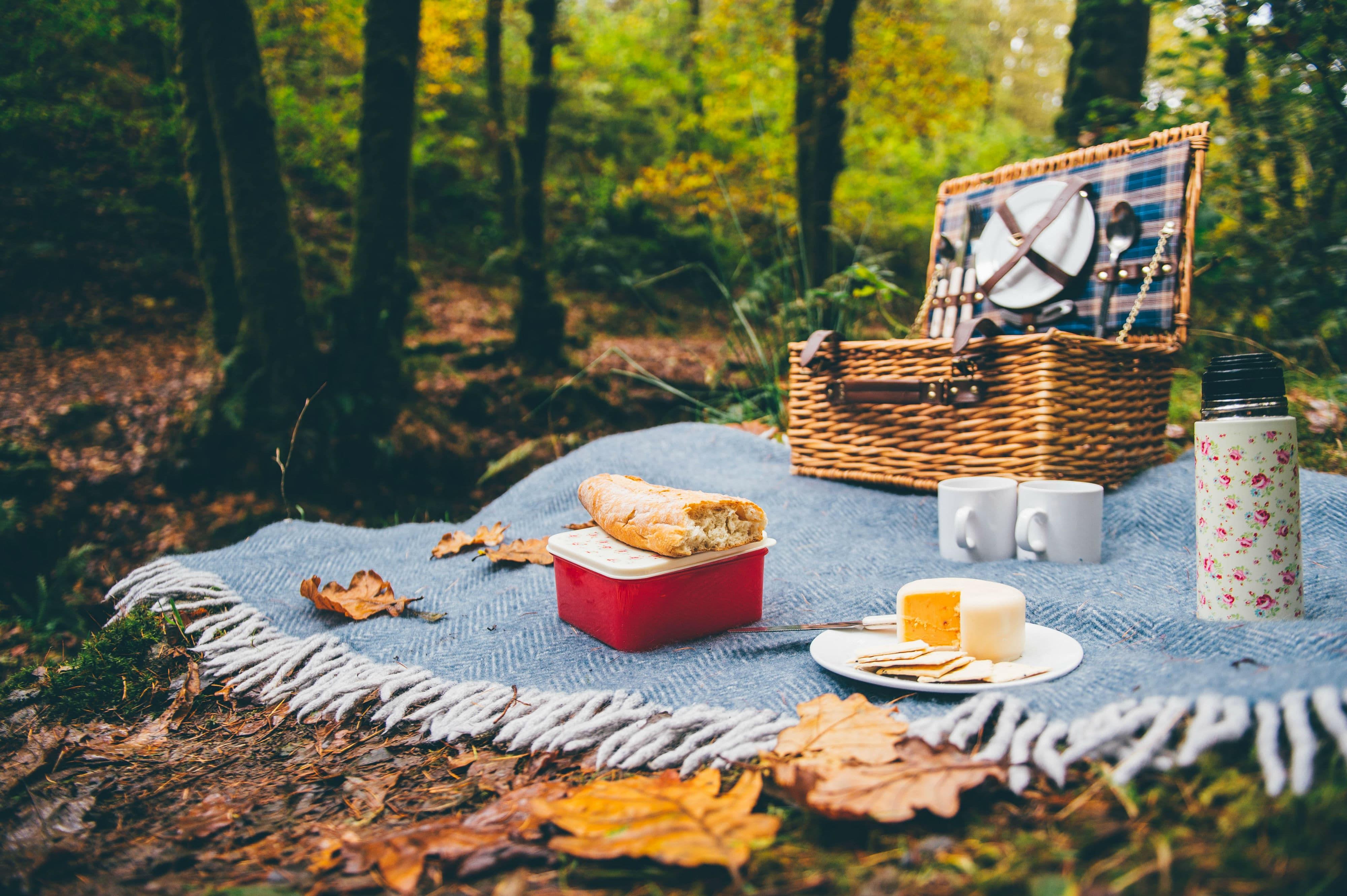 картинки пикник на траве картинки днем