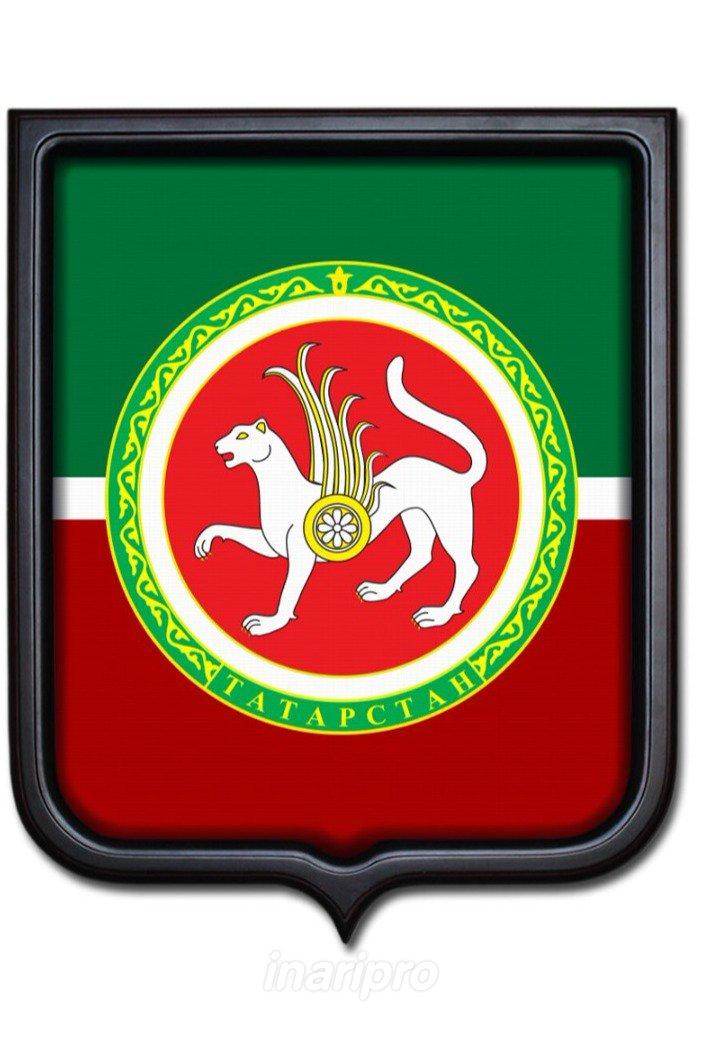 флаг татарстана и герб картинки